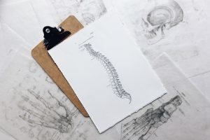 Chiropractic Care and Your Musculoskeletal System